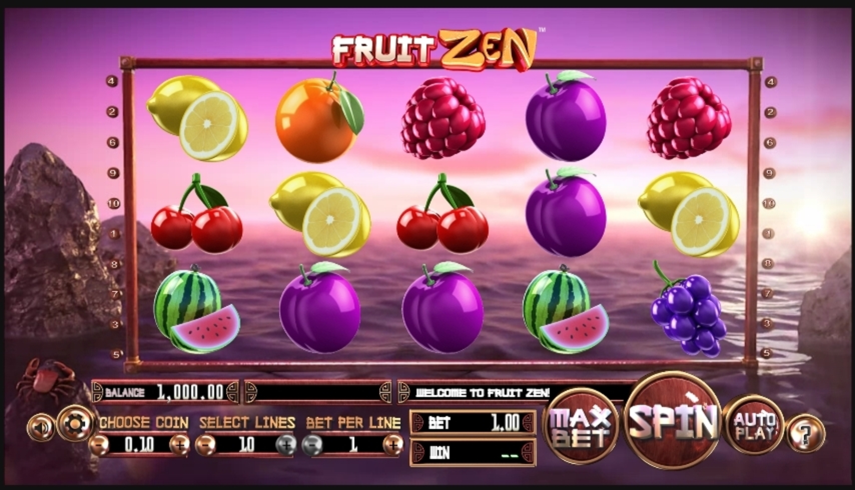 Reels in Fruit Zen Slot Game by Betsoft