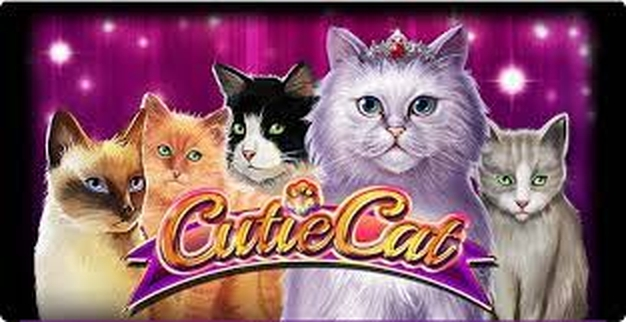 The Cutie Cat Online Slot Demo Game by Gamomat