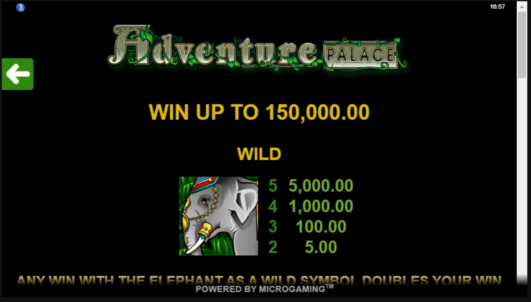 Info of Adventure Palace Slot Game by Microgaming
