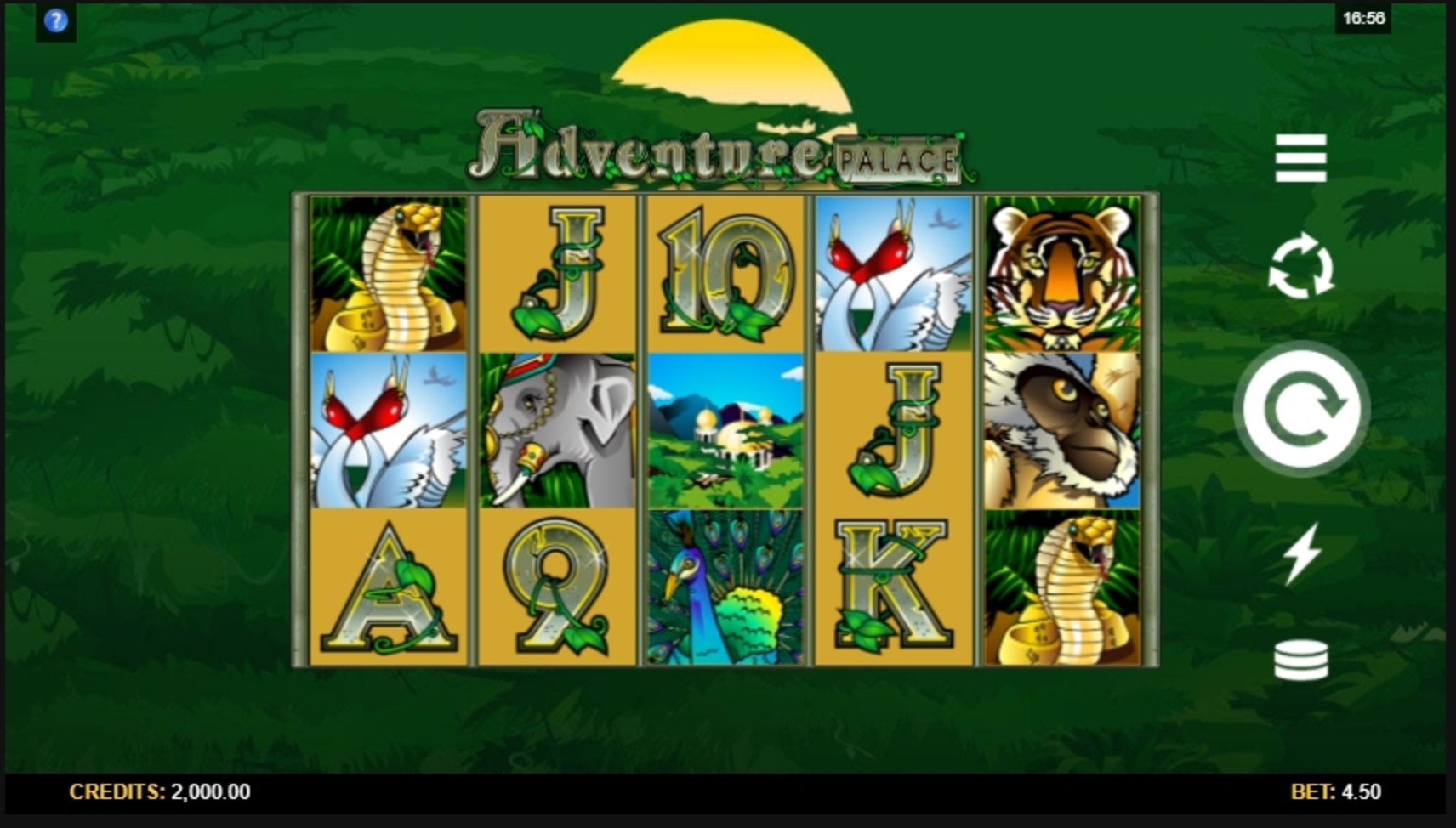 Reels in Adventure Palace Slot Game by Microgaming