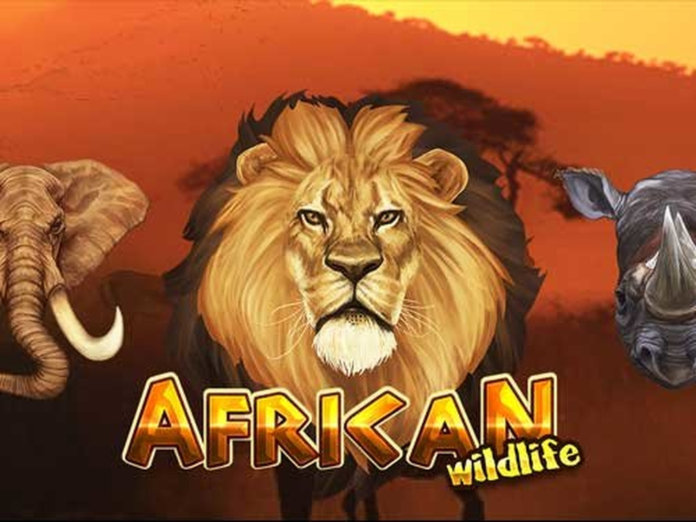 The African Wildlife Online Slot Demo Game by Platin Gaming