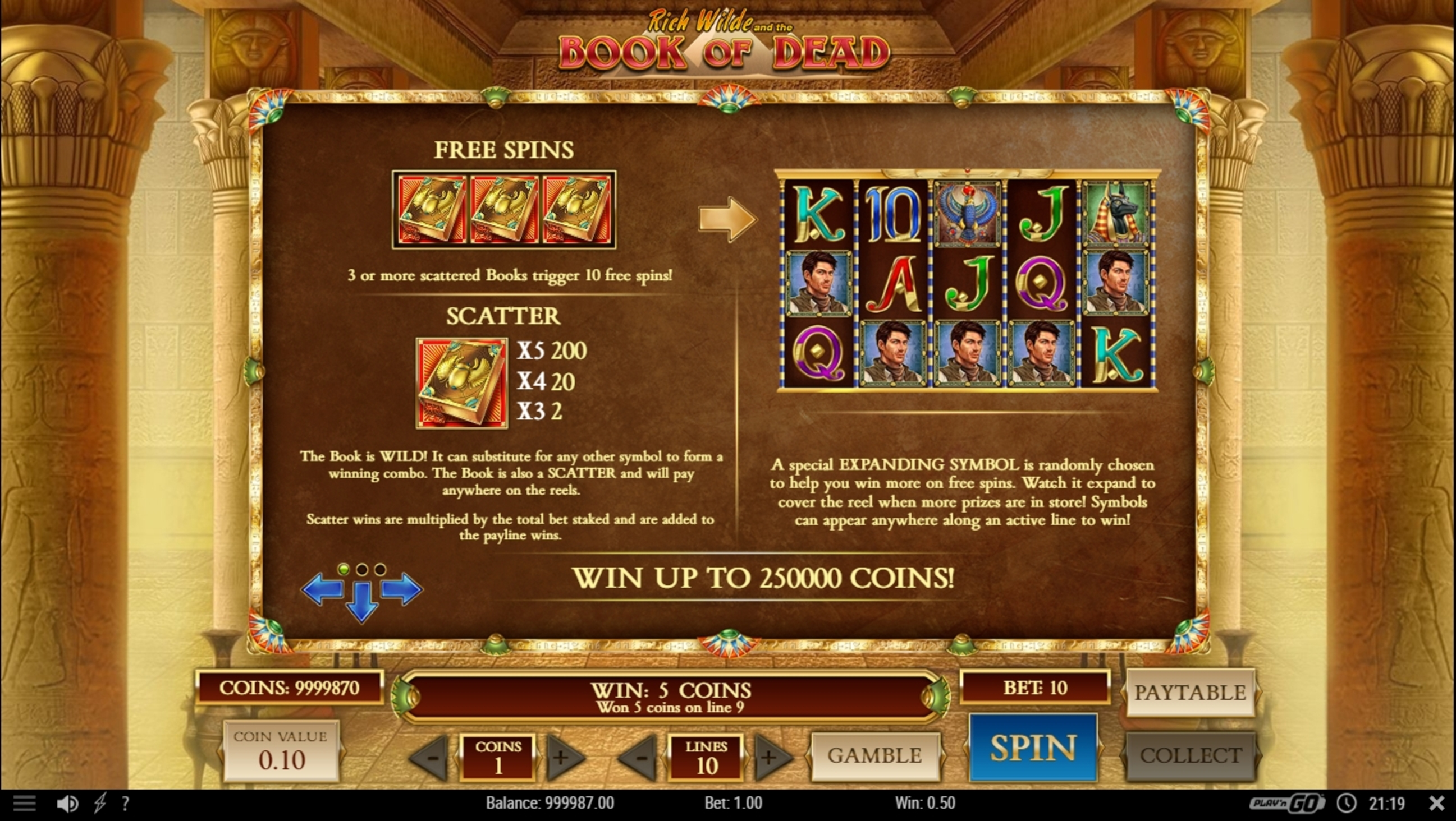 Info of Book of Dead Slot Game by Playn GO