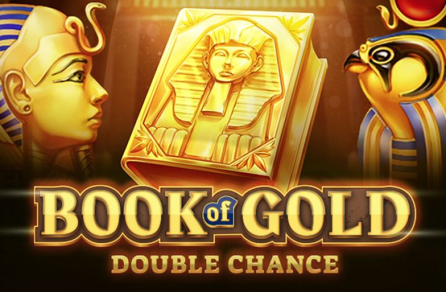 The Book of Gold: Double Chance Online Slot Demo Game by Playson