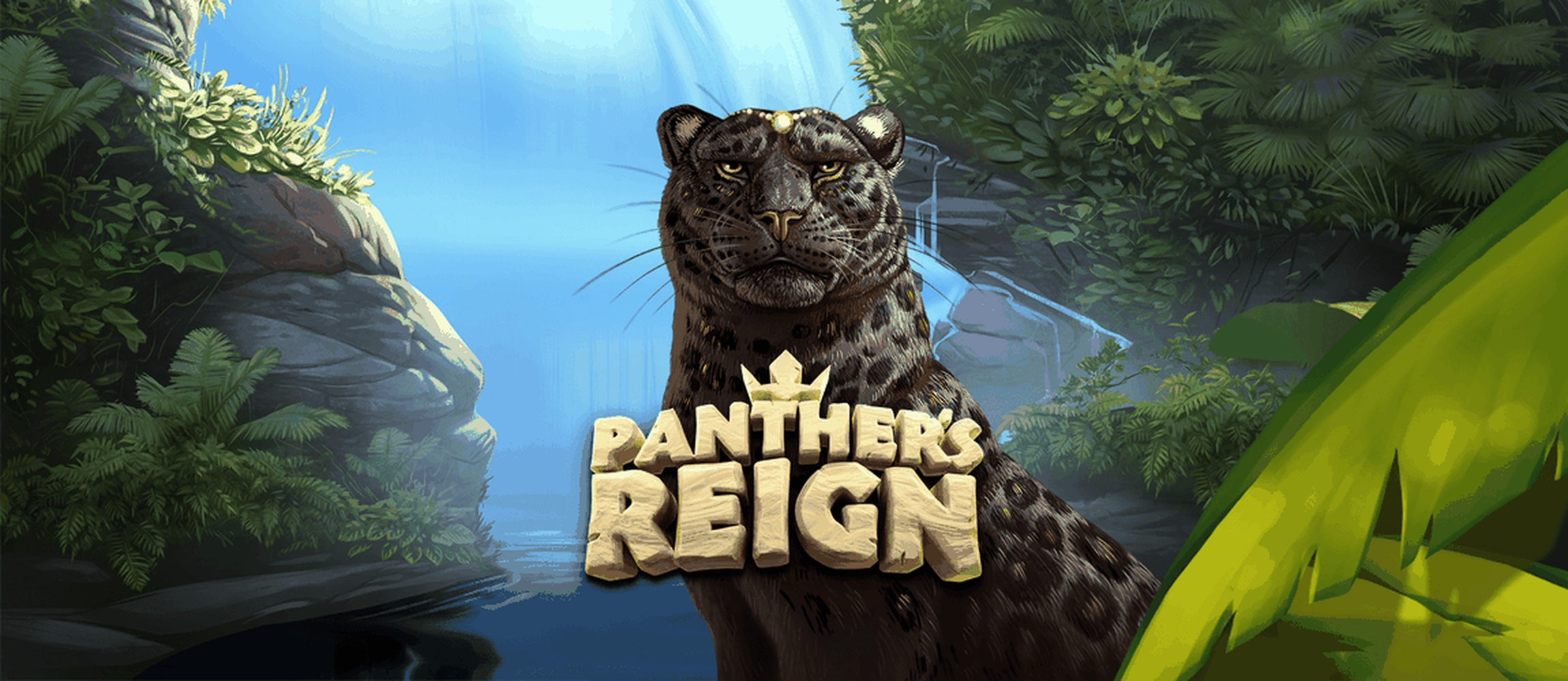 The Panthers Reign Online Slot Demo Game by Quickspin