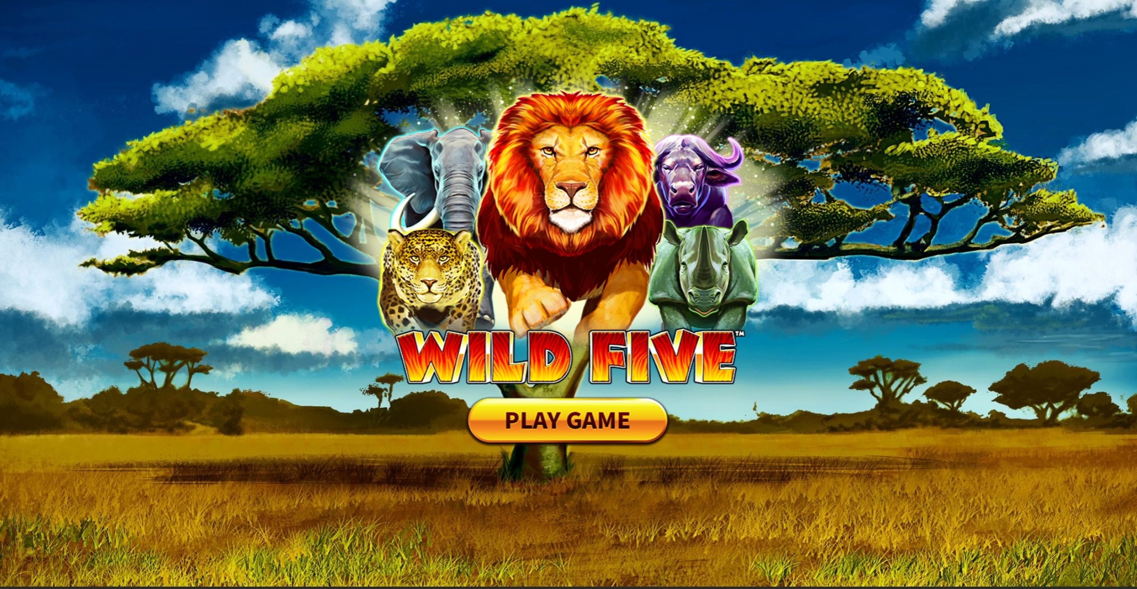 Win Money in Wild Five Free Slot Game by Skywind