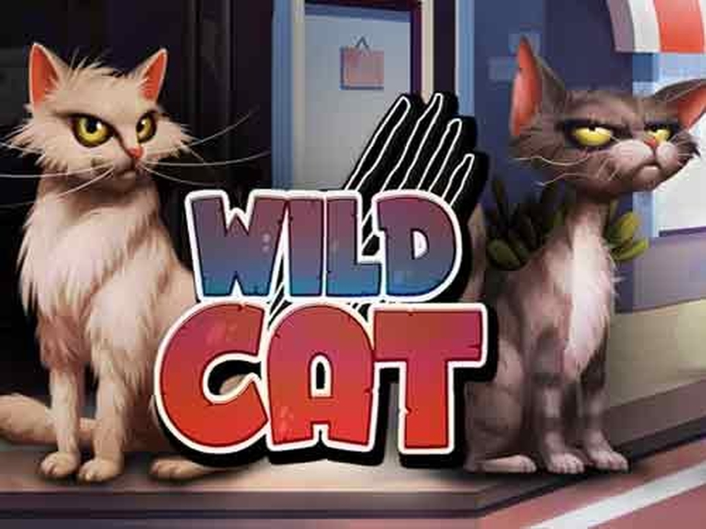 The Wild Cat Online Slot Demo Game by Spinmatic