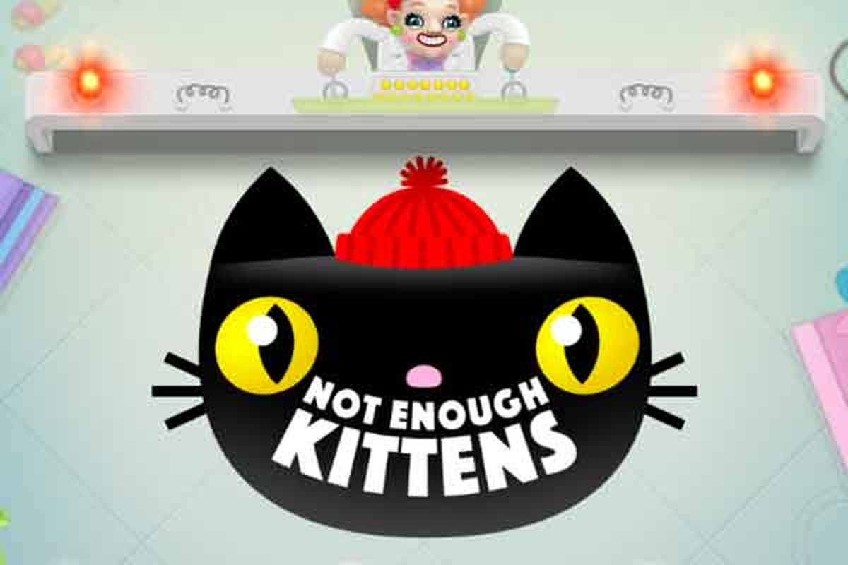 The Not Enough Kittens Online Slot Demo Game by Thunderkick
